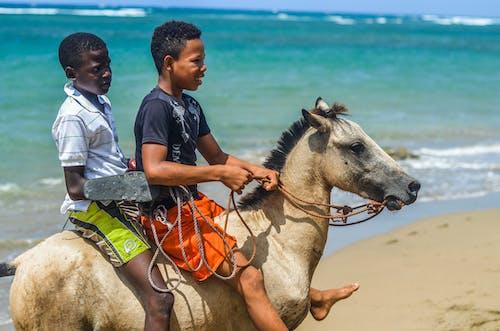 Photos gratuites de république dominicaine