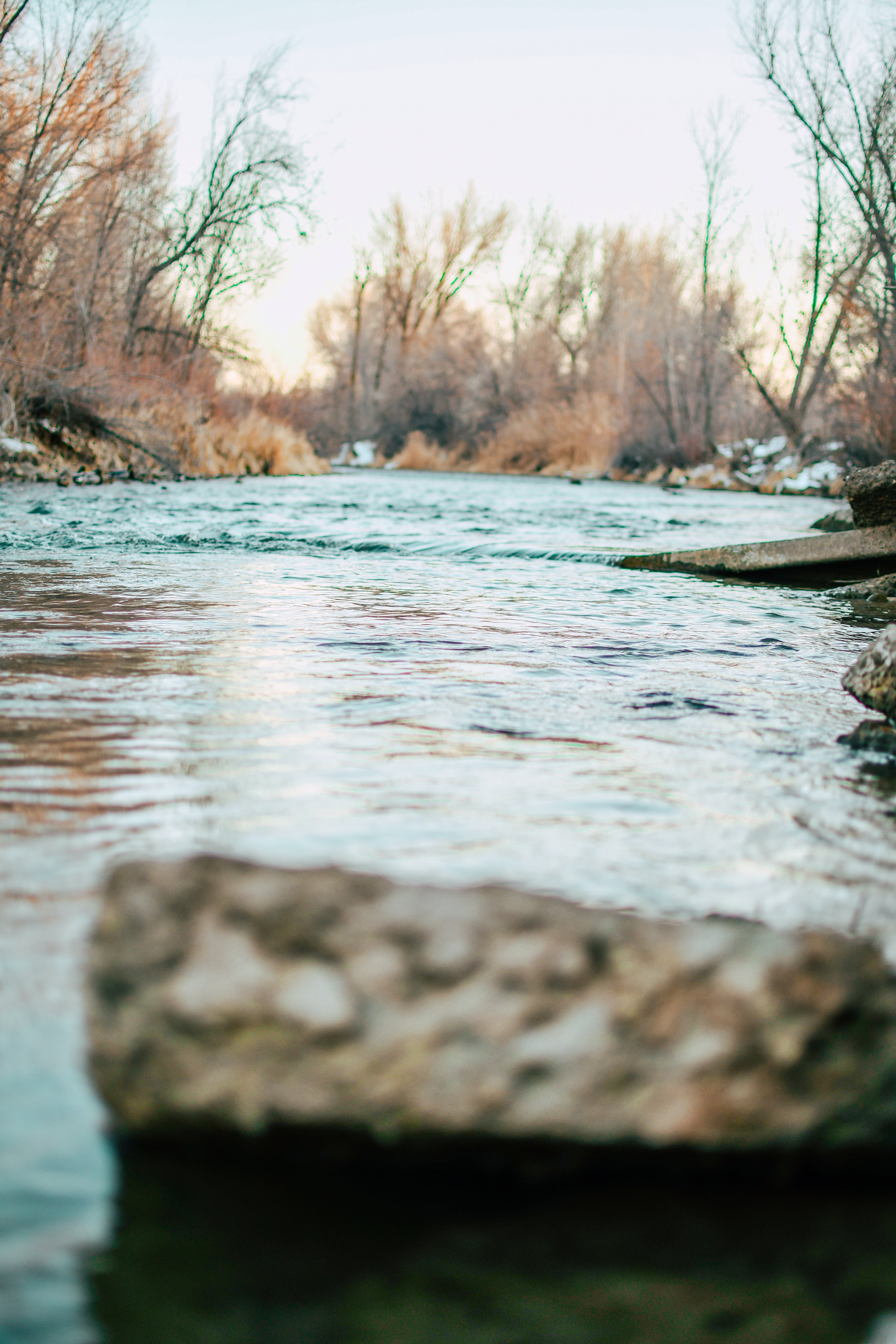 Free stock photo of beauty in nature, chicago river, cold, colorado river