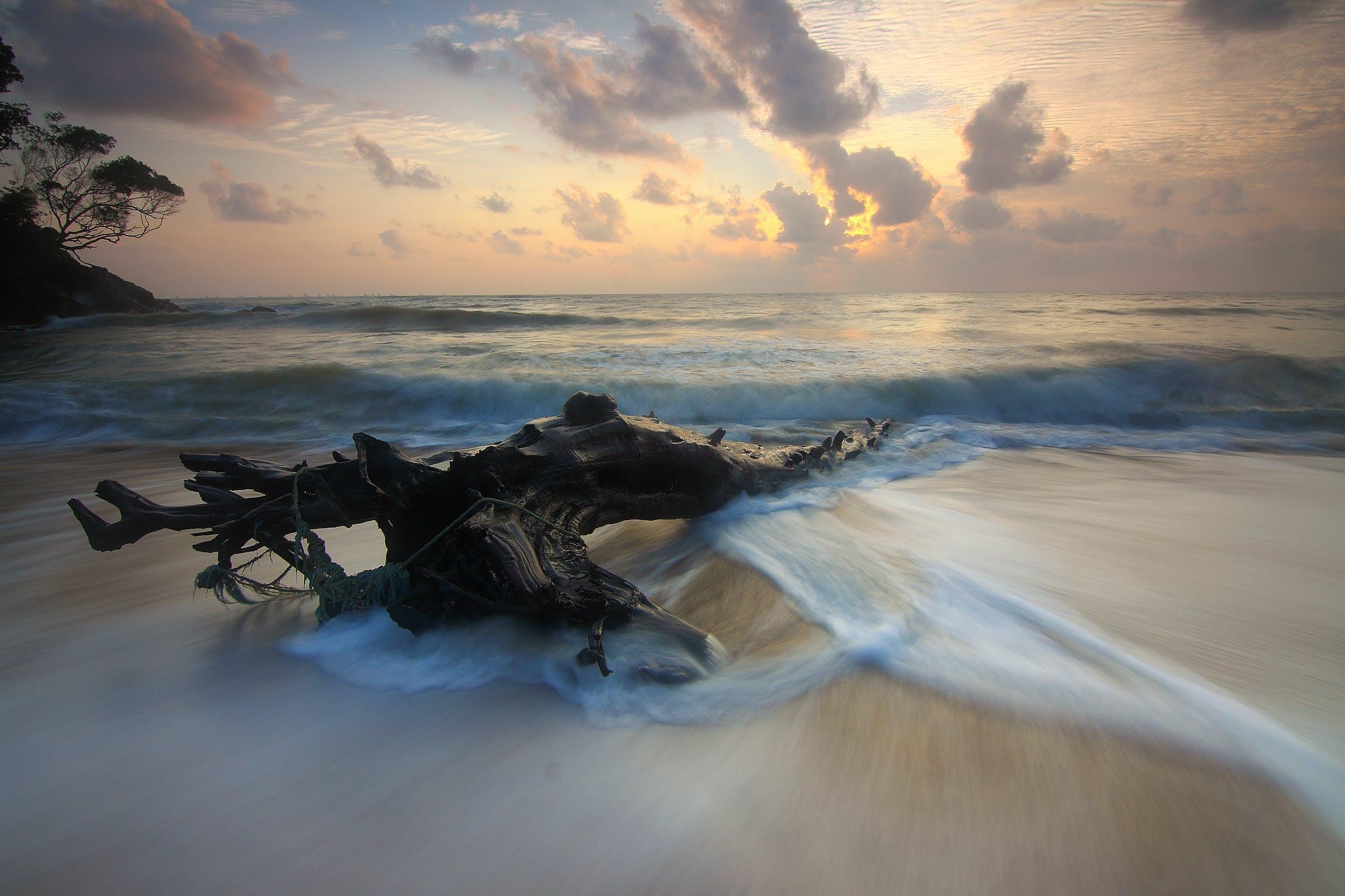 Seashore Photograph