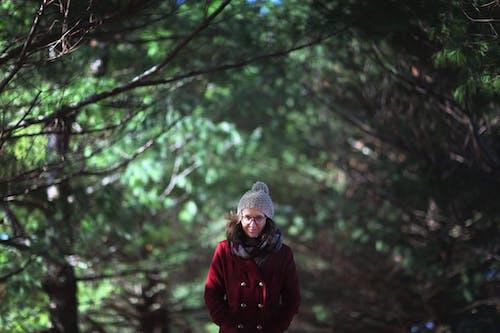 Kostenloses Stock Foto zu bäume, brillen, draußen, frau