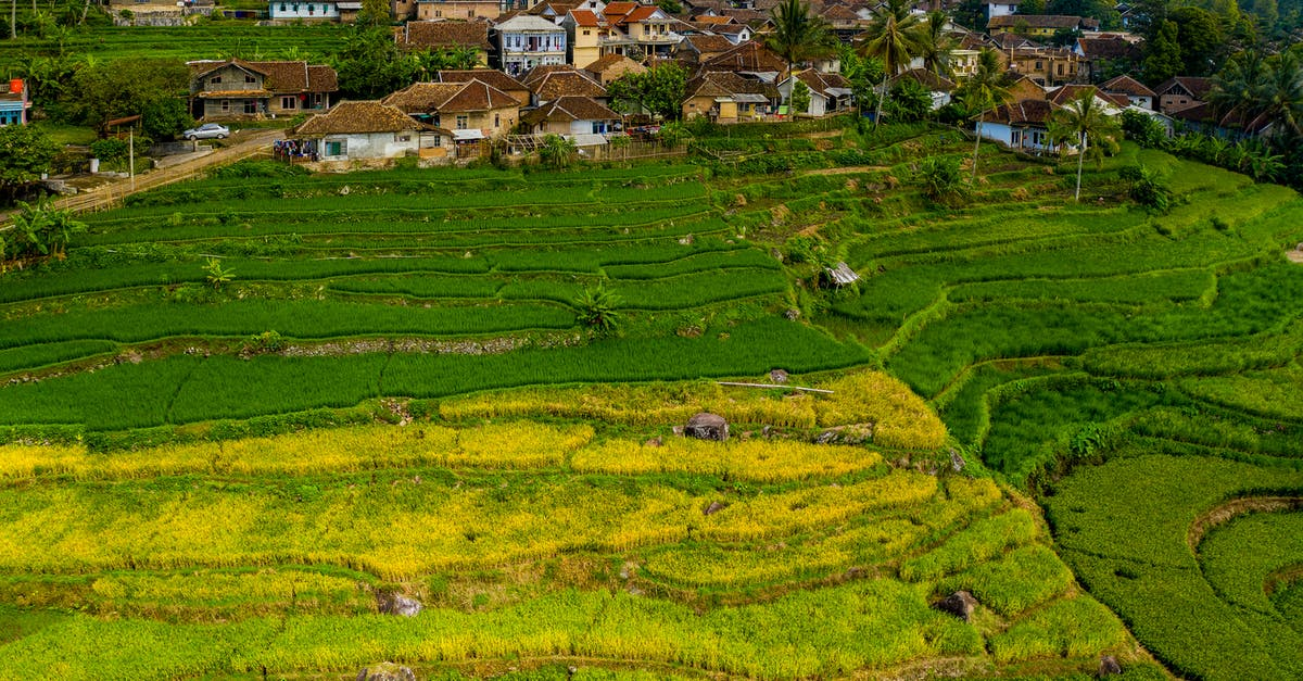 Aerial Shot Of Cropland · Free Stock Photo