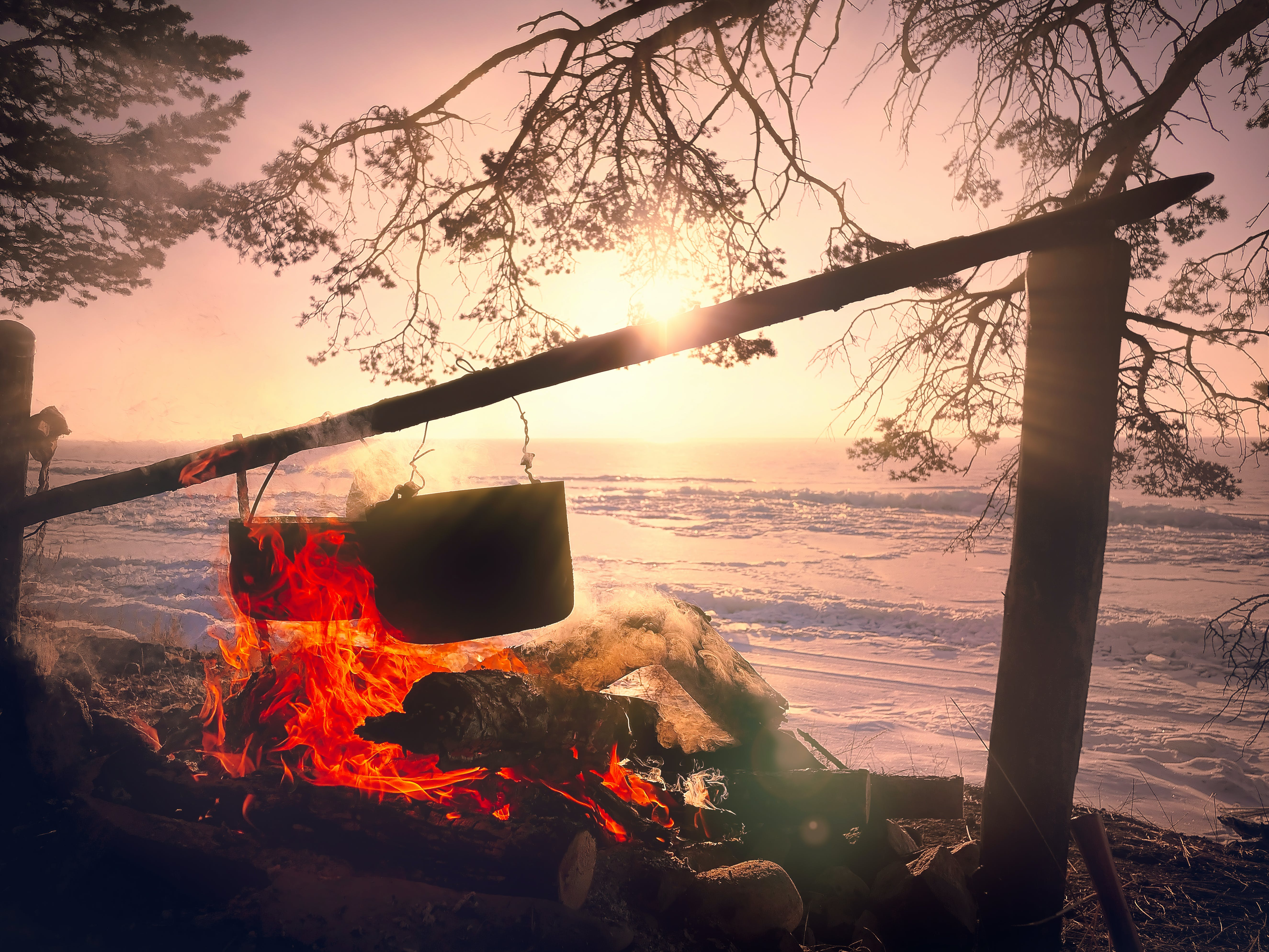 Free stock photo of adventure, campfire, cooking, fire