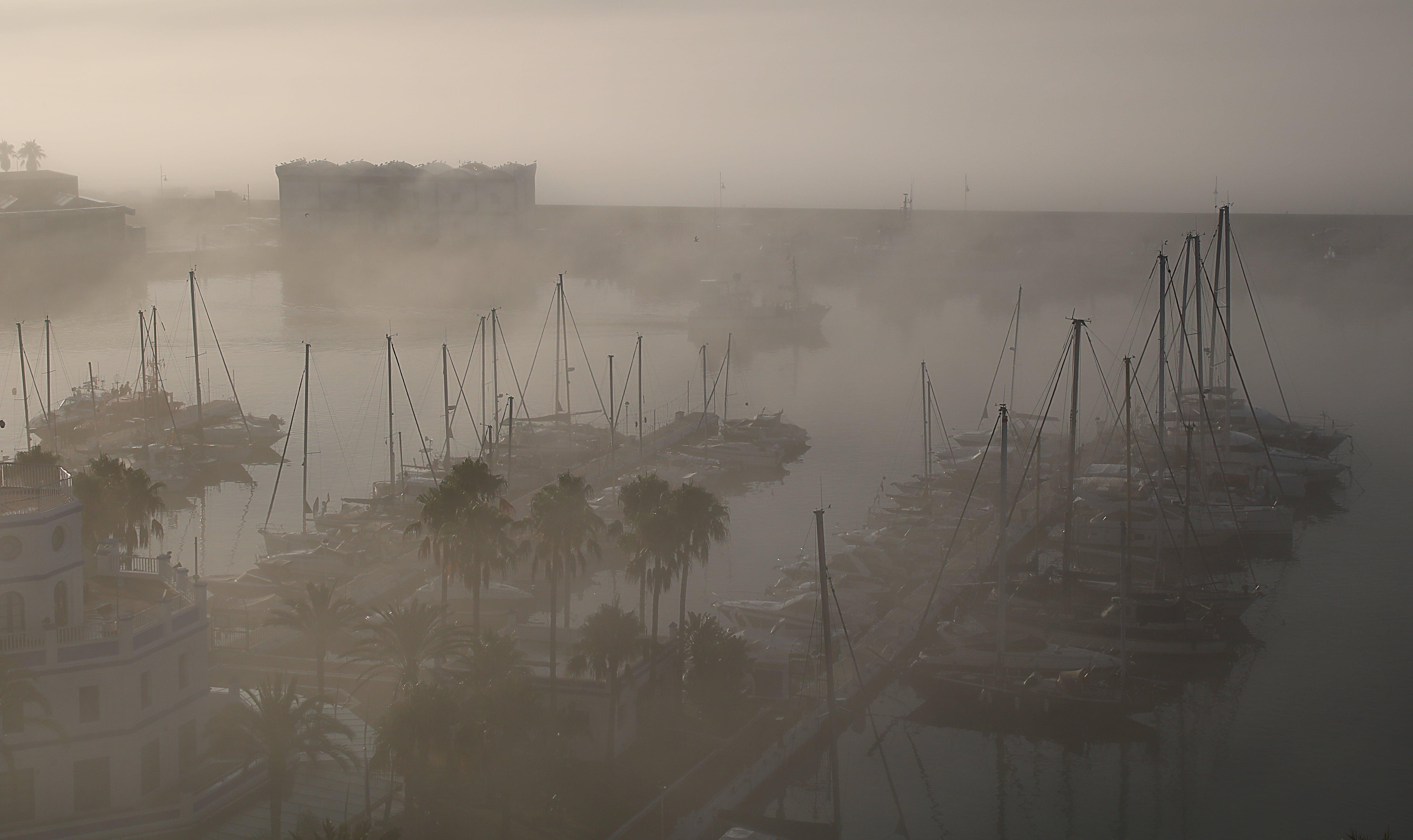Free stock photo of fog, port, spain