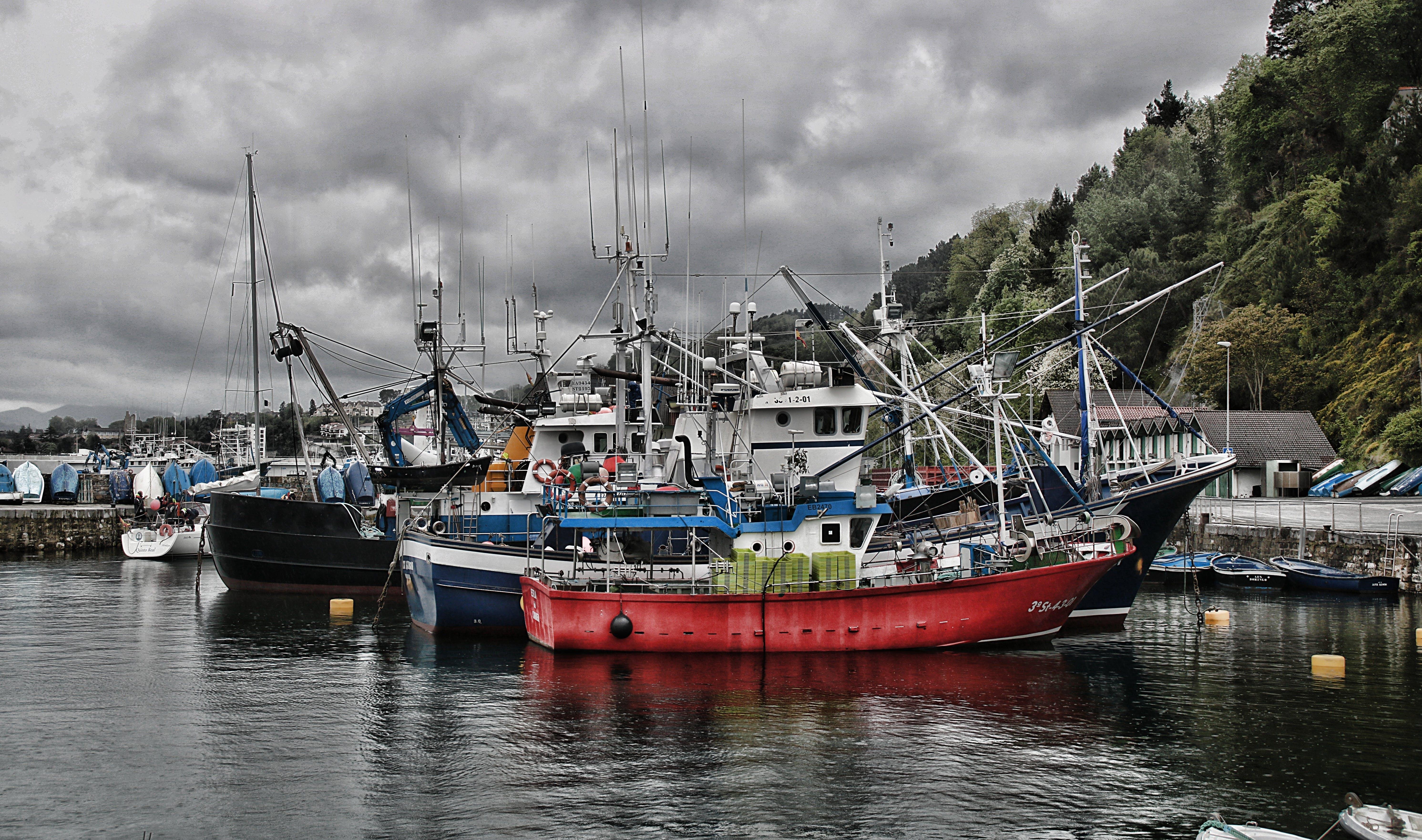 Free stock photo of fishing boats, port