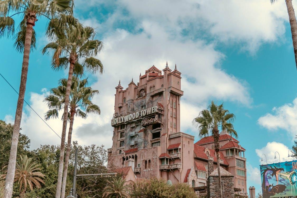 Free stock photo of disney, florida, holidays