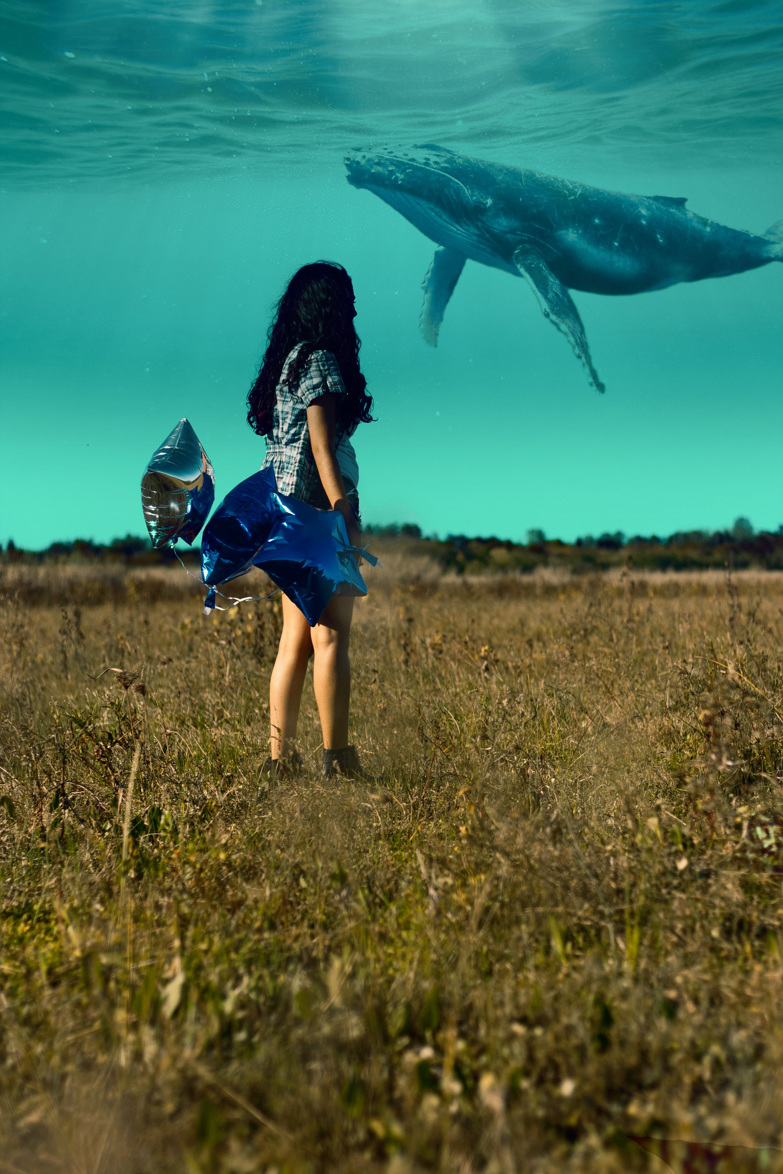 Gratis lagerfoto af hvaler, natur, Pige, piger