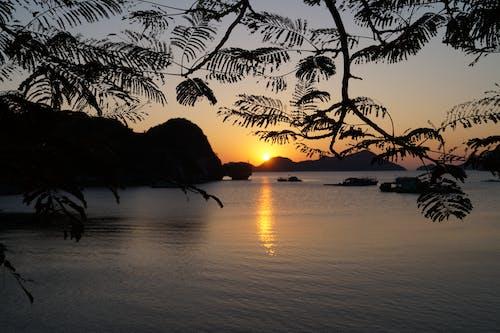 Free stock photo of evening, sunset, water
