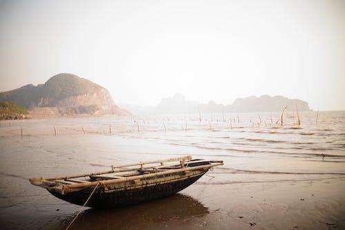 Free stock photo of beach, boat, row boat