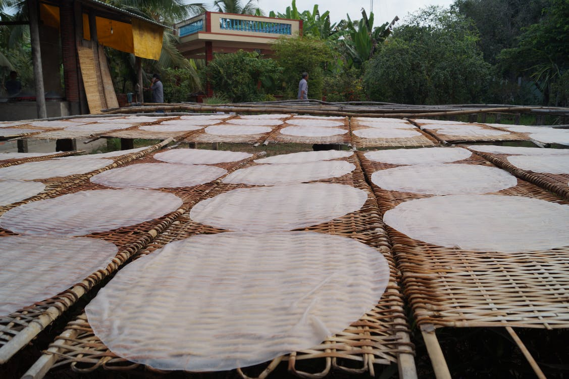 Free stock photo of drying, rice paper