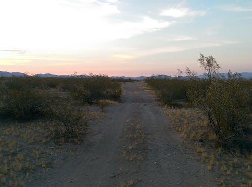 Безкоштовне стокове фото на тему «бруд, гори, дорога, кущі»