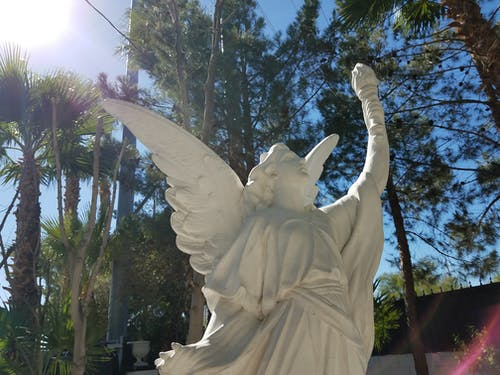 Безкоштовне стокове фото на тему «ststue, Лас-Вегас, пальма, сонячне світло»