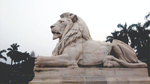 aslan, beyaz heykel, heykel, kalküta içeren Ücretsiz stok fotoğraf