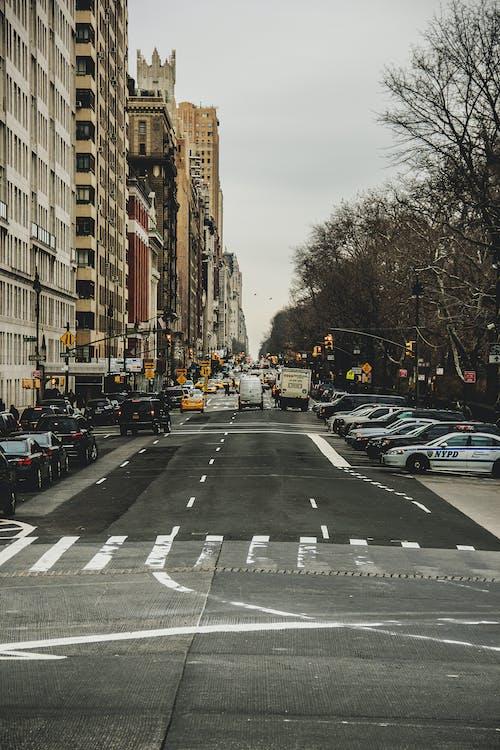 Základová fotografie zdarma na téma asfalt, auta, budovy, město