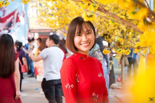 Immagine gratuita di vietnam