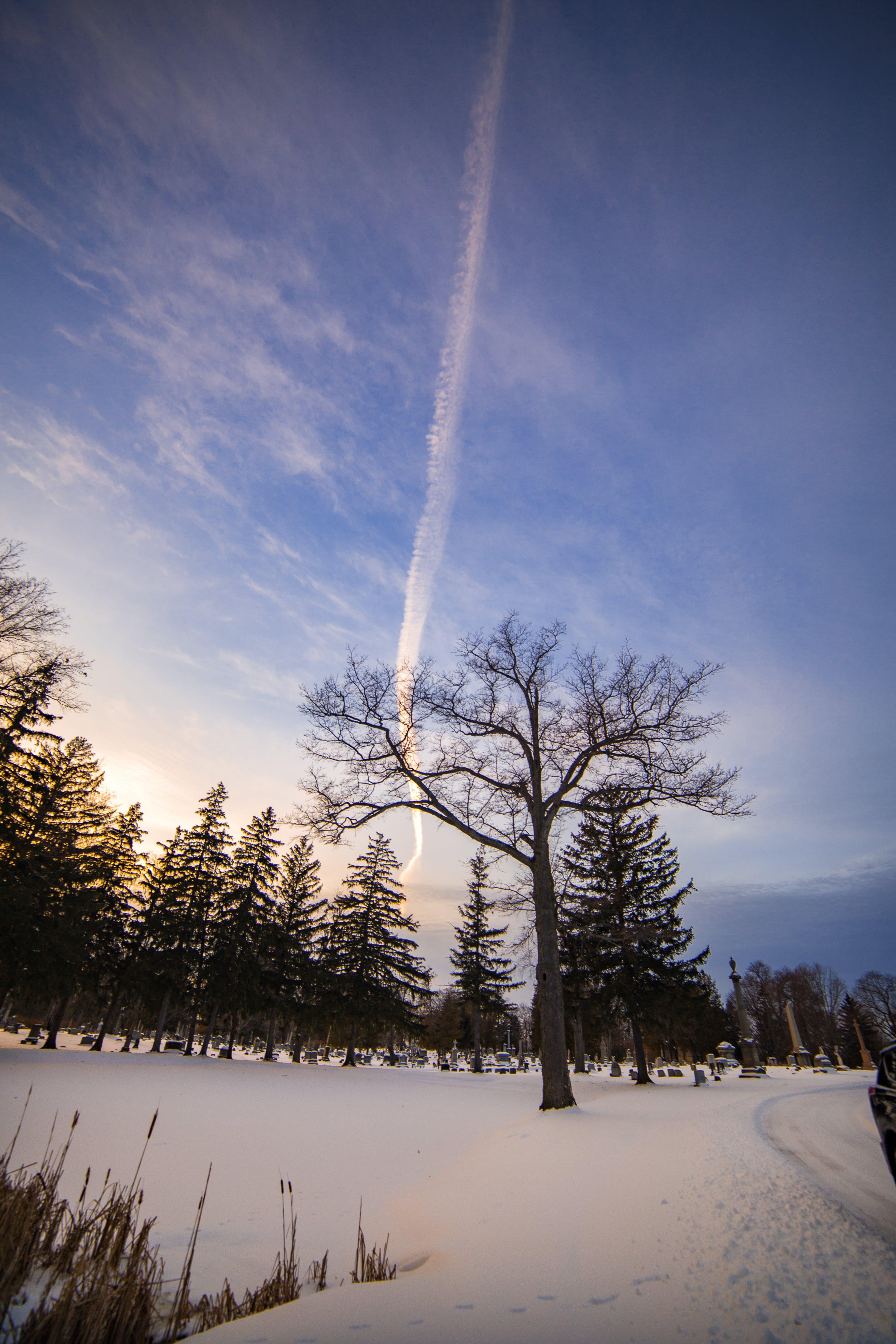 Free stock photo of cool, sunset, winter