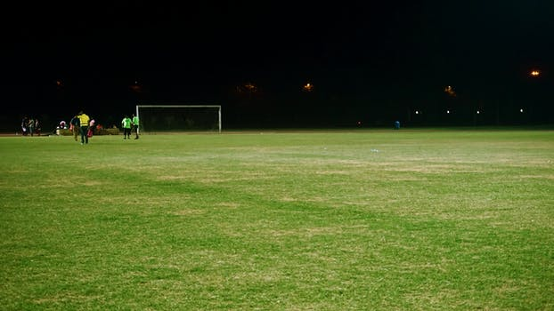 Free stock photos of grass field pexels free stock photo of people lights night field voltagebd Images