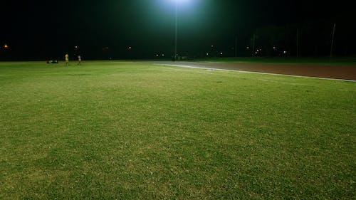 Immagine gratuita di campo, campo d'erba, erba, erba verde
