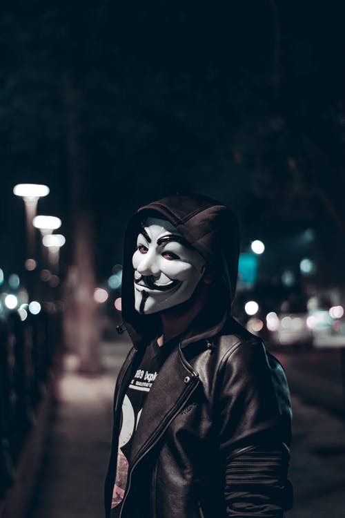 Person Wearing Guy Fawkes Mask