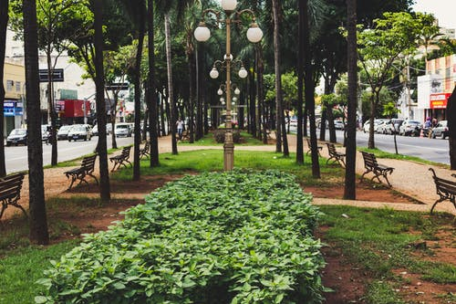 Free stock photo of Avenida Goiás, brasil, city, day