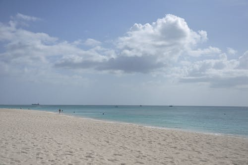 グランドケイマン, セブンマイルビーチ, ビーチ, 海洋の無料の写真素材
