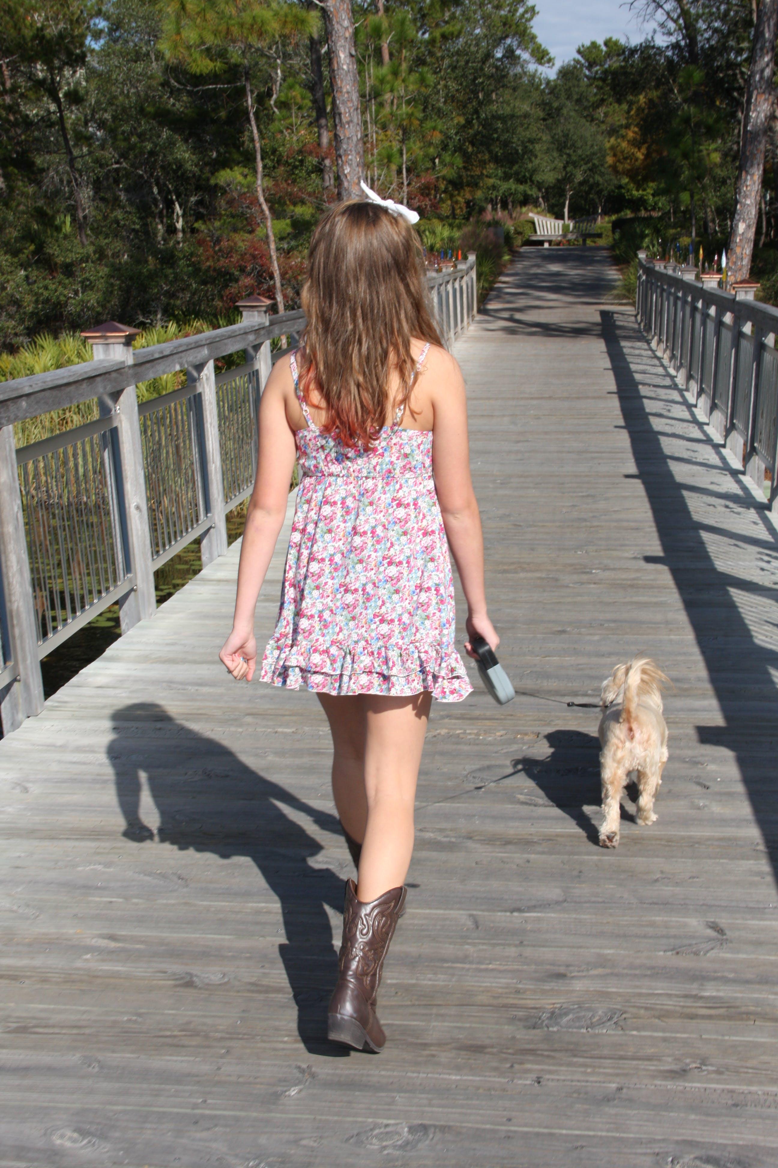 Free stock photo of dog, girl, walking