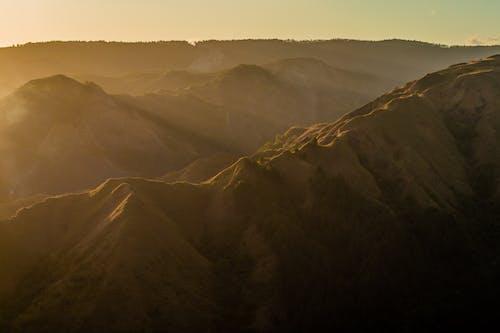 喜歡, 太陽, 對比, 小時 的 免费素材照片