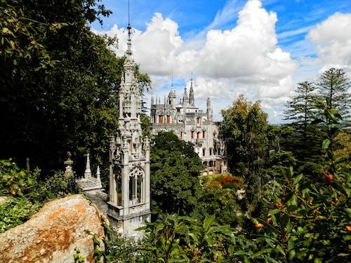 regaleira, 景觀, 紀念碑 的 免費圖庫相片