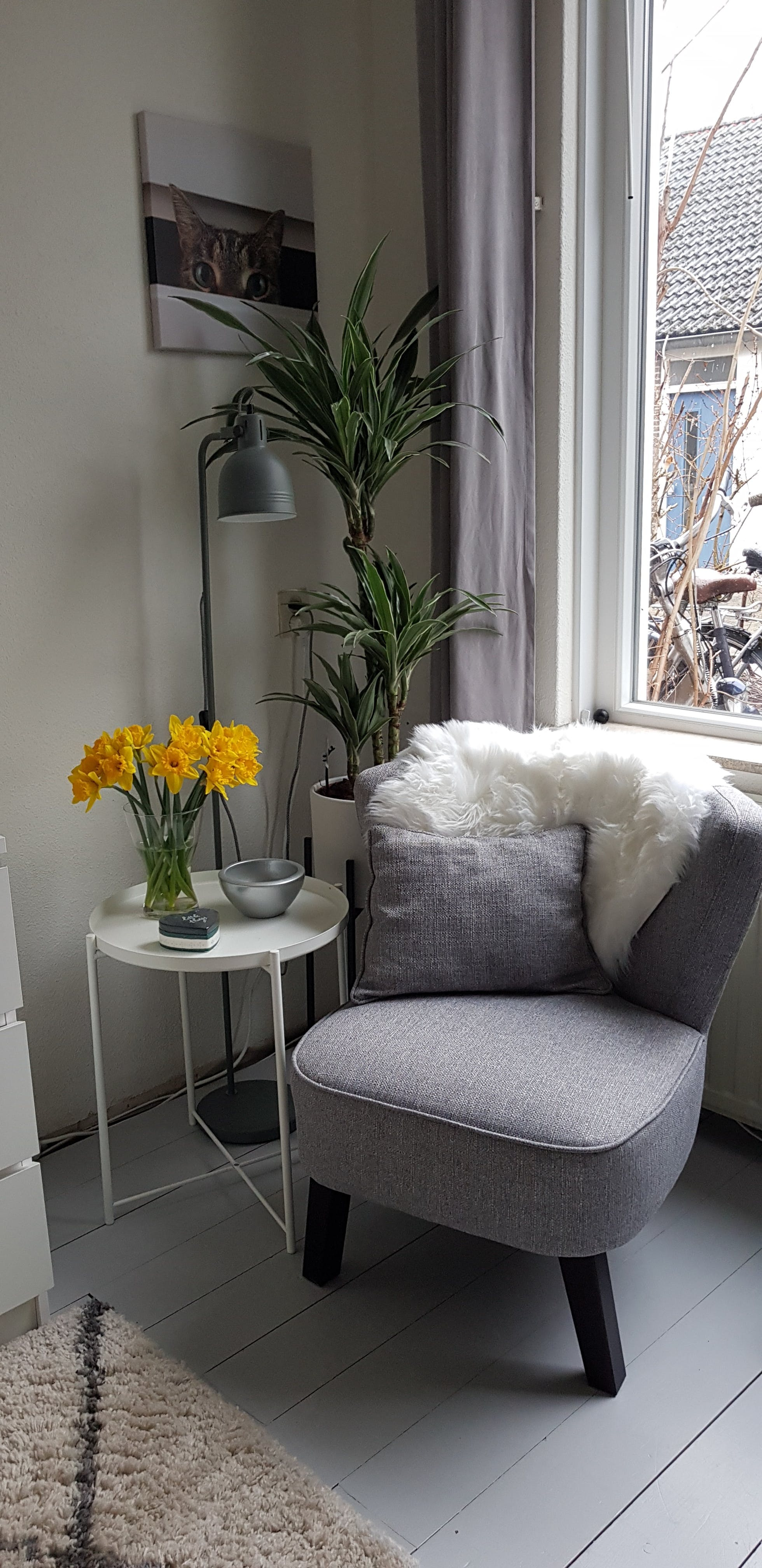 Free stock photo of chair, daffodils, flower, grey