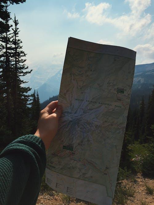 Free stock photo of evergreen trees, map, mount rainier, nation parks