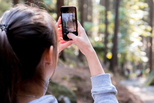 Woman Using Her Smartphone While Taking the Picture the Forest