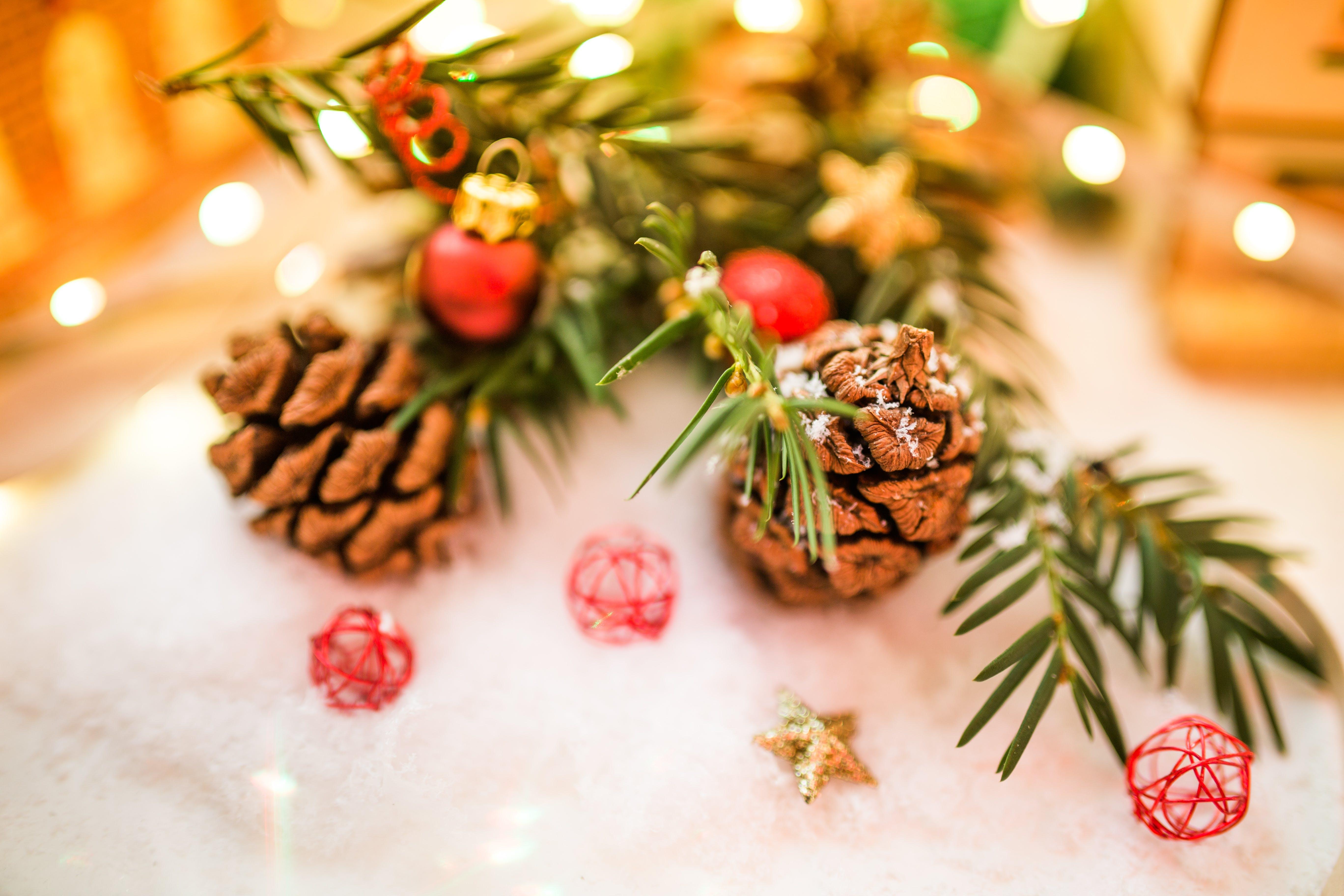 Δωρεάν στοκ φωτογραφιών με βάθος πεδίου, χειμώνας, Χριστούγεννα, Χριστουγεννιάτικη διακόσμηση