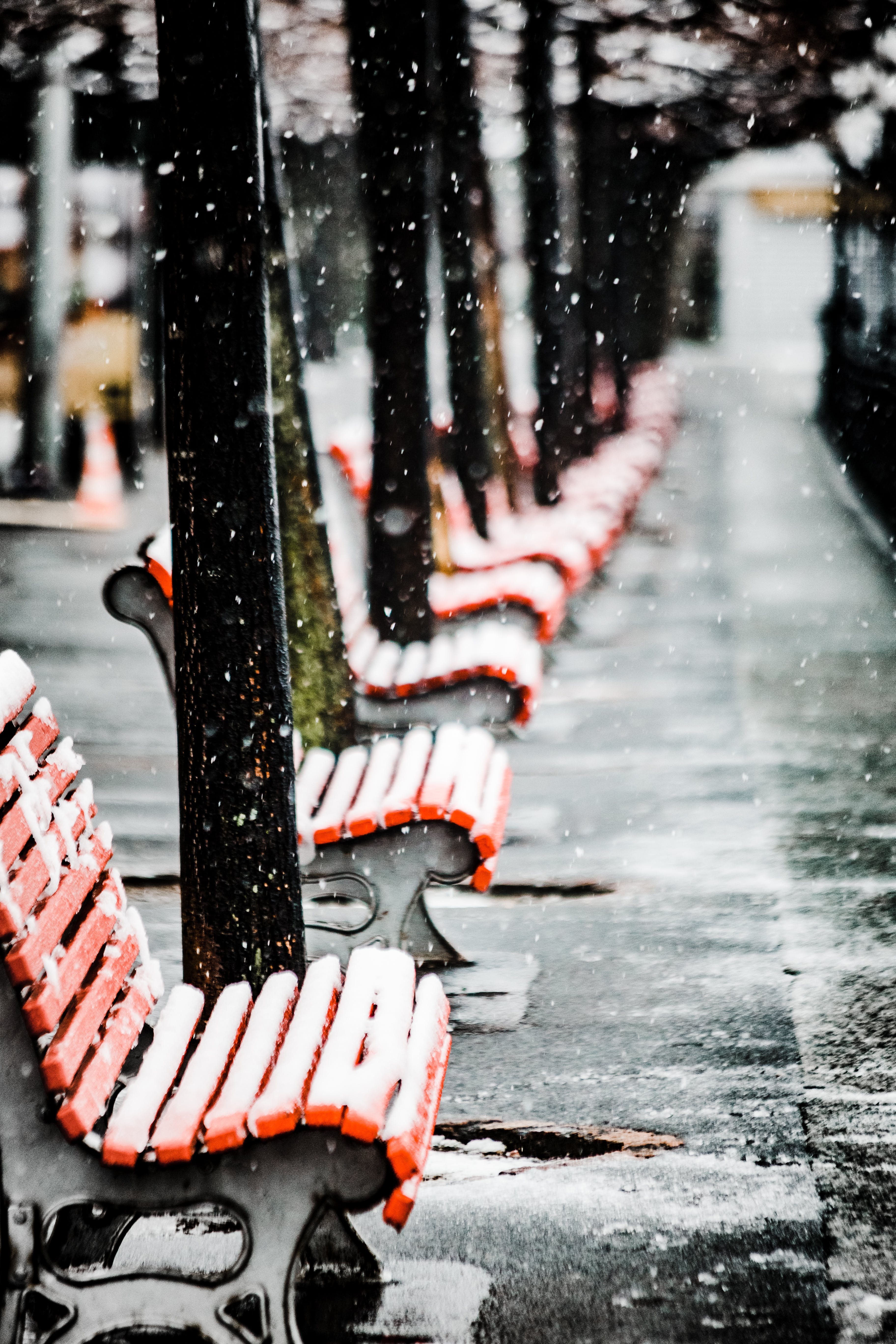 Chairs Covered in Snow