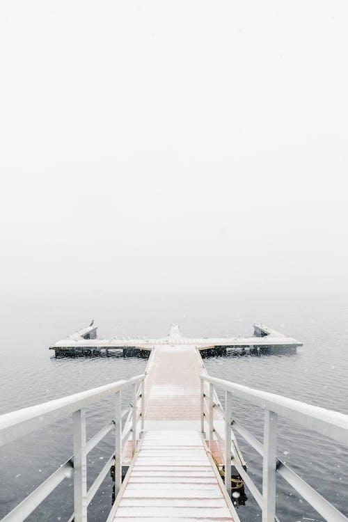 Kostnadsfri bild av brygga, dagsljus, dimma, dimmig