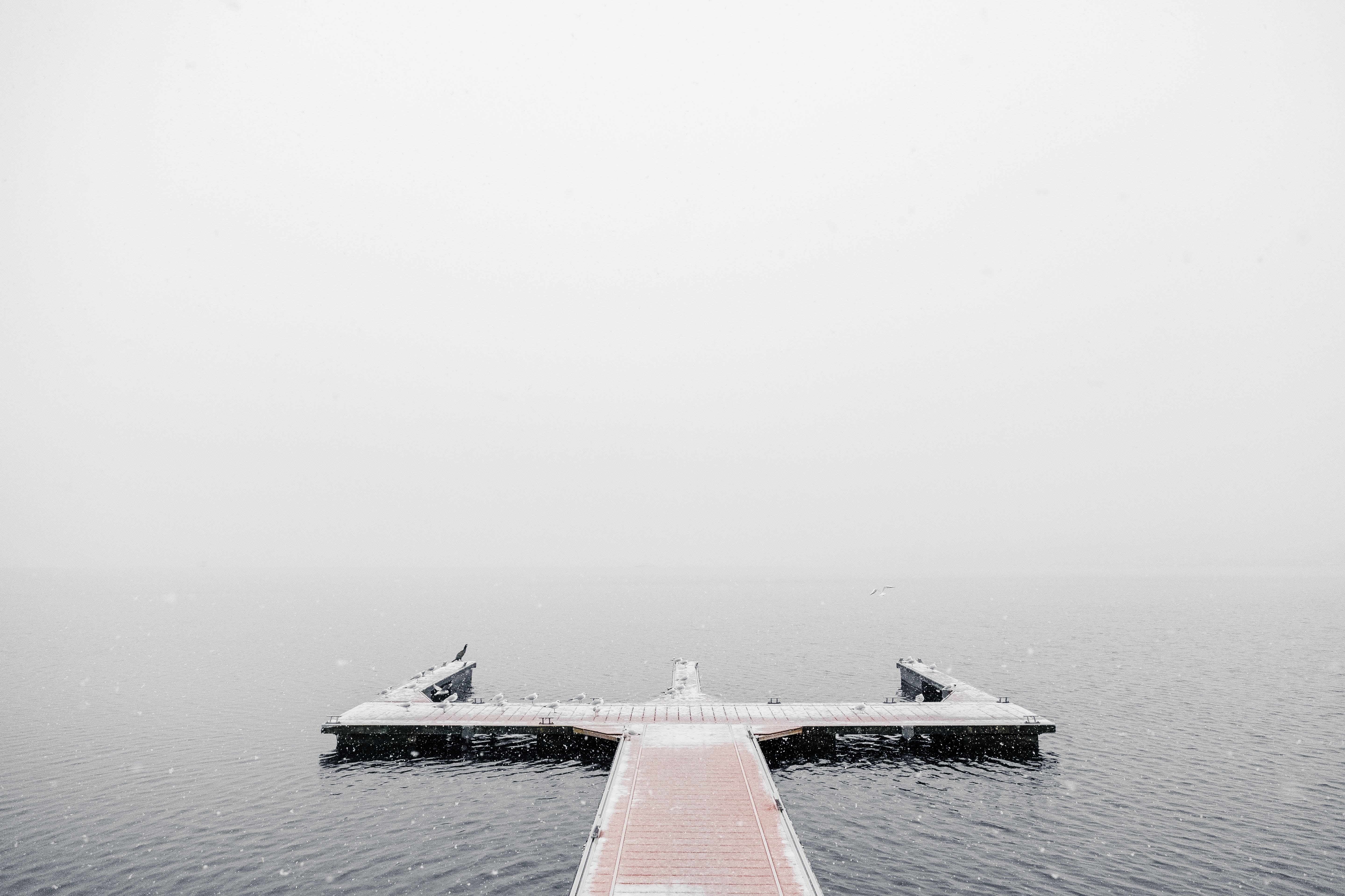 Dock Covered in Fog