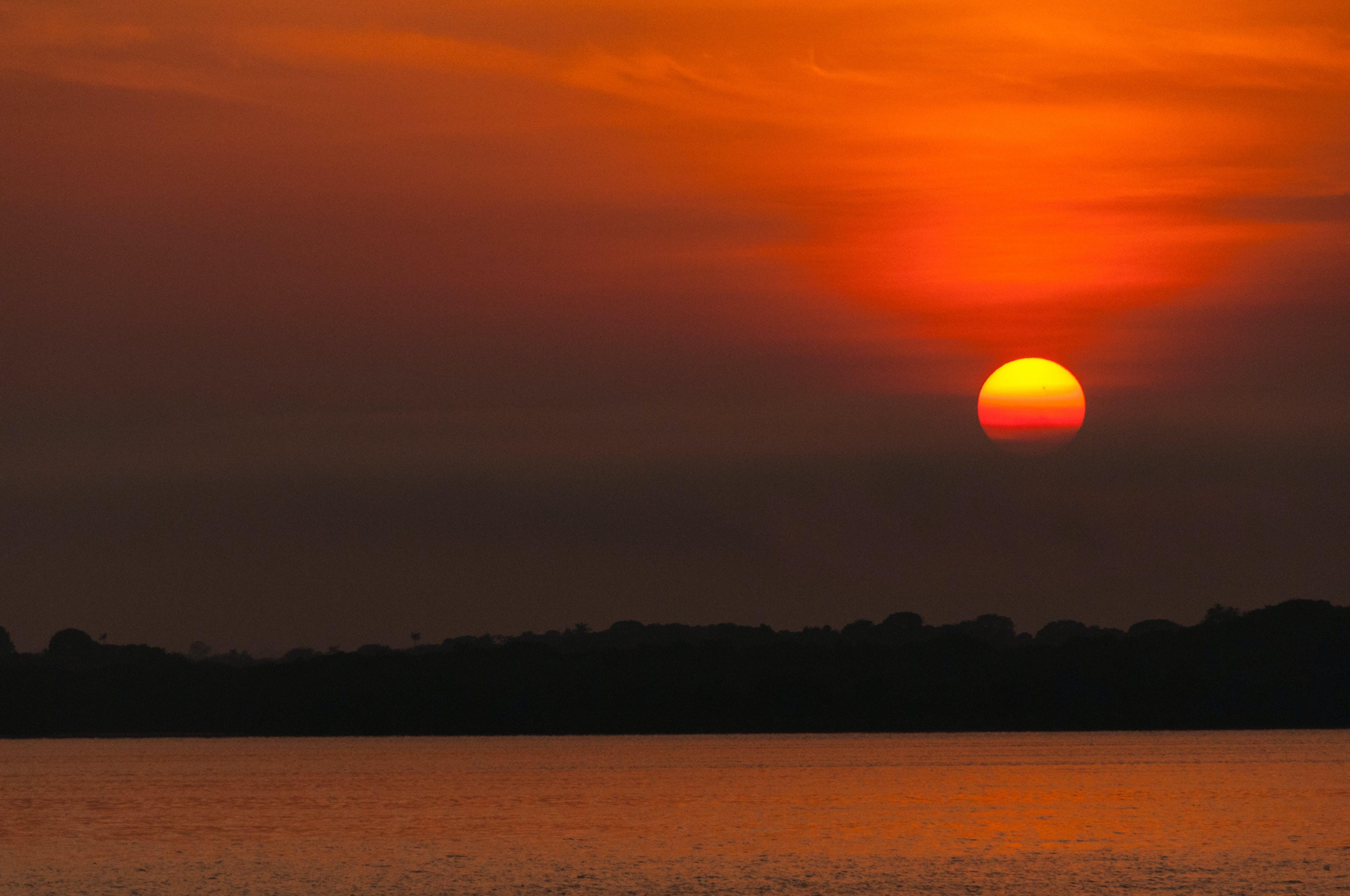 Kostenloses Stock Foto zu amazonas, morgensonne, wald