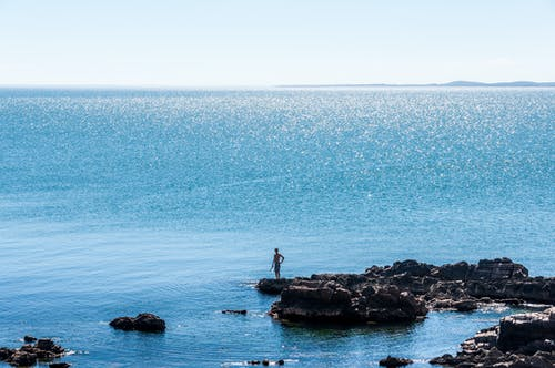 Gratis lagerfoto af blåt vand, fiskeri, hav, sten