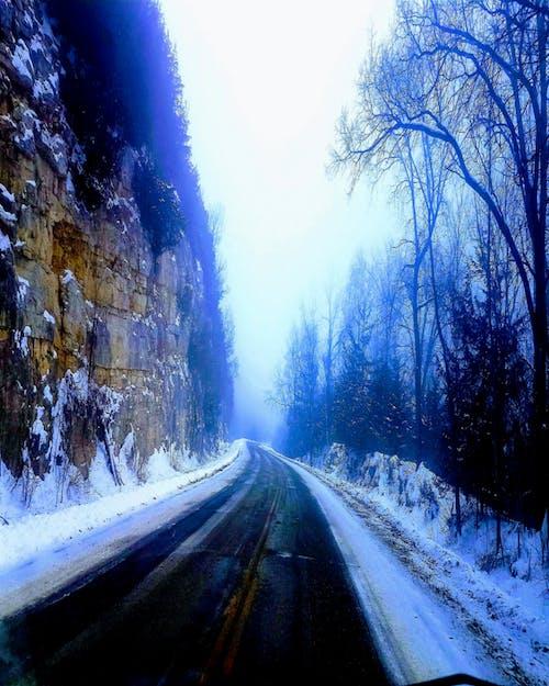 Foto profissional grátis de #fog #nature #road #winter #snow