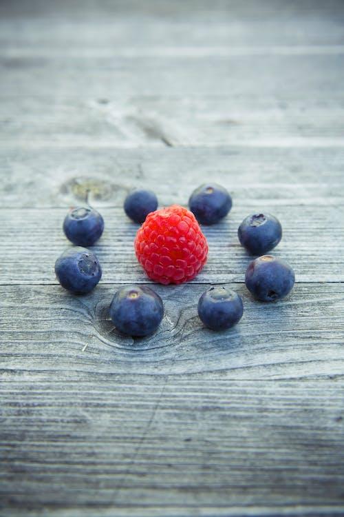 blåbær, bær, close-up