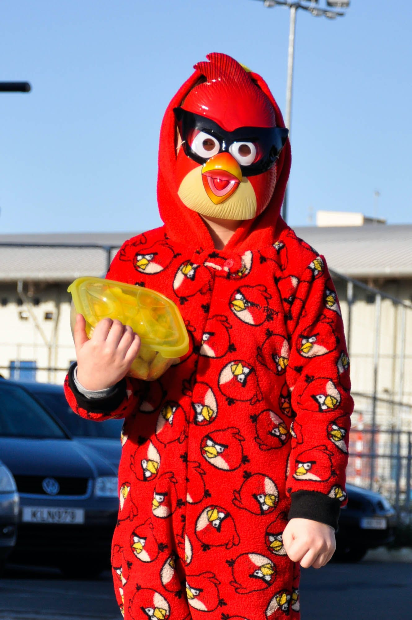 Free stock photo of angry bird, carnaval, costume, kid