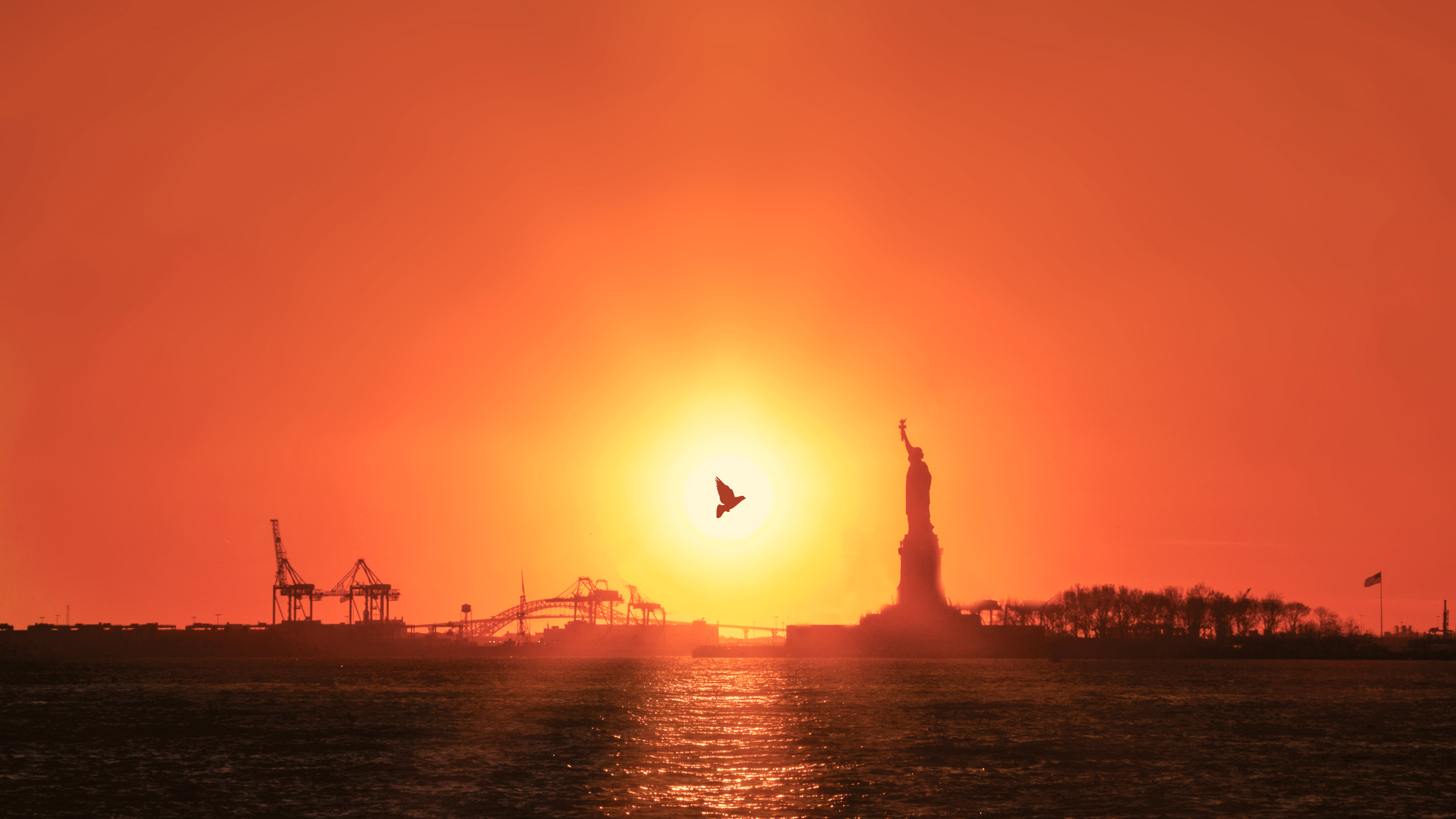 Free stock photo of desktop wallpaper, flying, golden horizon, horizon