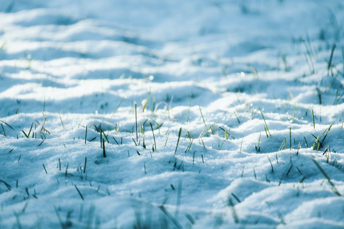 ambiente, concentrarsi, congelando