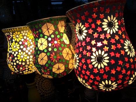 Free stock photo of art, lights, flowers, dark
