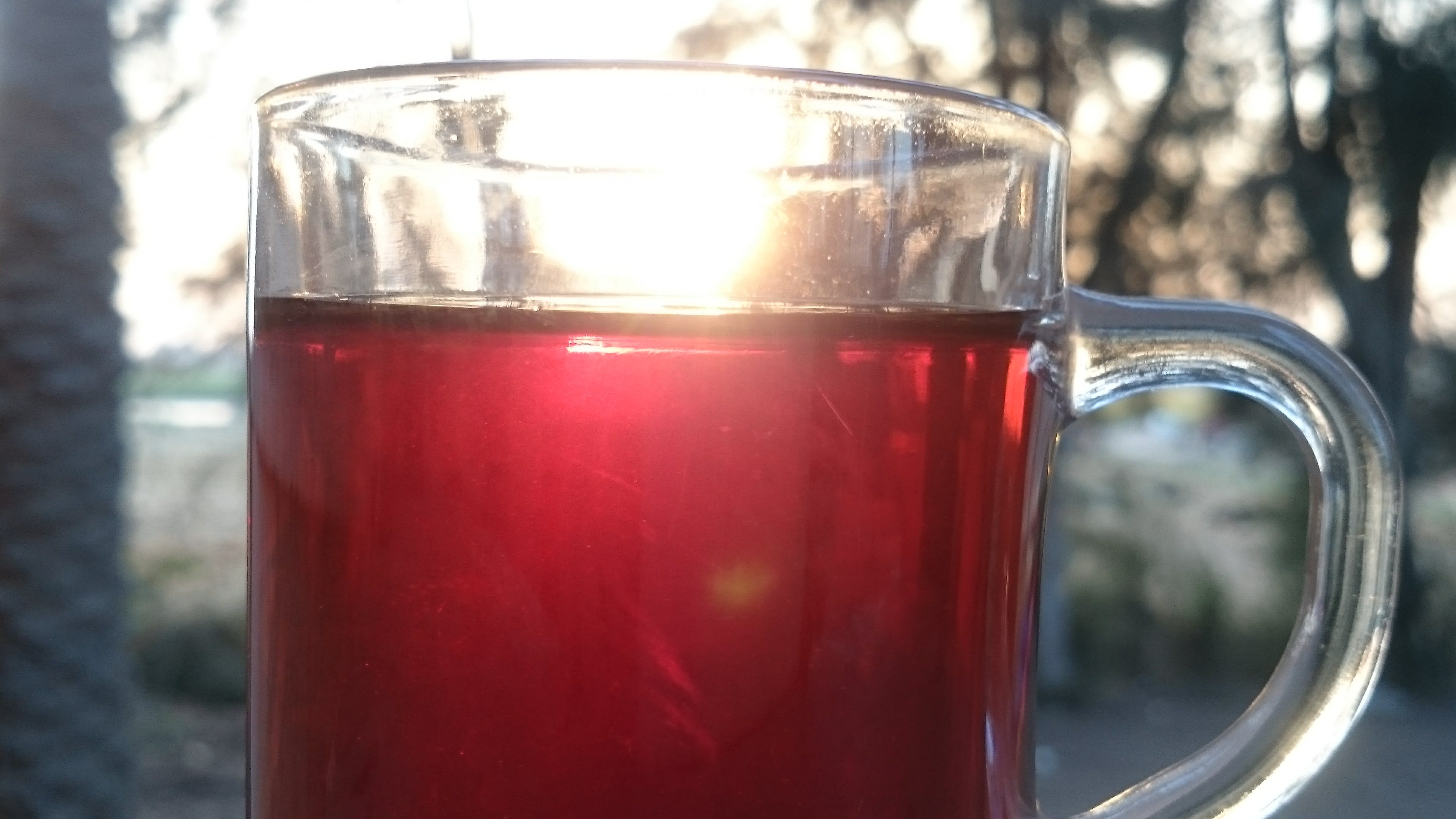 Free stock photo of sun set, tea