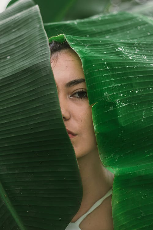 Woman Hiding Behind Green Leaf