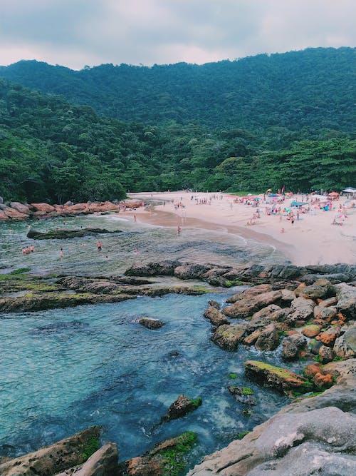 Foto stok gratis air, lautan, pantai