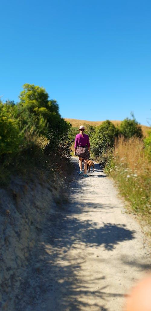 #outdoorchallenge, 助步車, 夏天, 步行 的 免費圖庫相片