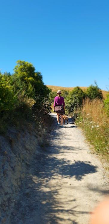 #outdoorchallenge, anjing, berjalan