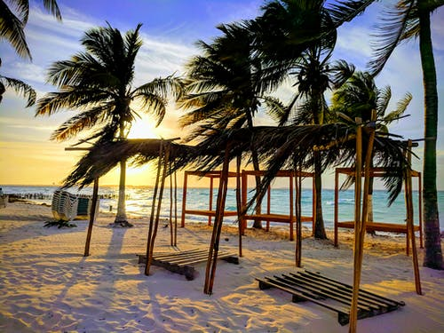 Fotobanka sbezplatnými fotkami na tému kokosové palmy, palmy, pláž, západ slnka