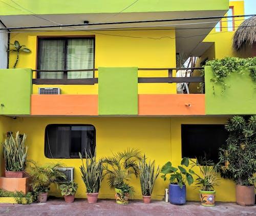 Fotobanka sbezplatnými fotkami na tému Mexiko, ulica