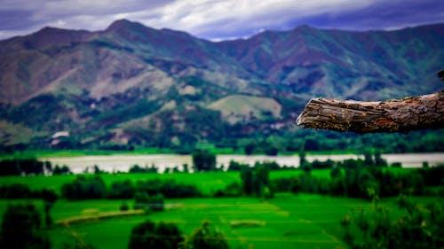 原本, 天性, 山谷, 景觀 的 免費圖庫相片